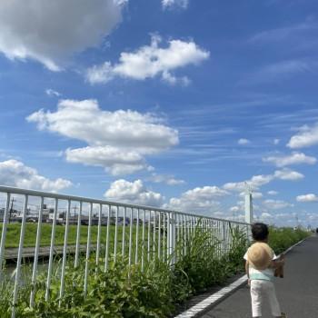 【Blog】トミーのお家「晴天の散歩道」