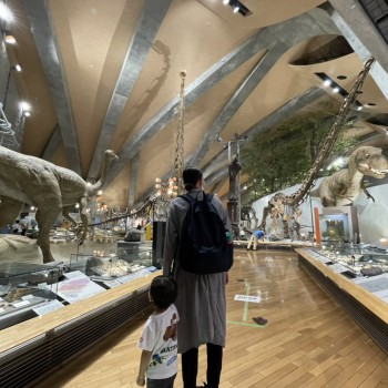 【Blog】トミーのお家「群馬自然史博物館」